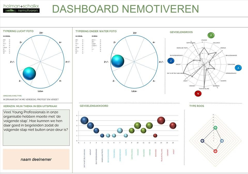 DashBoard_Nemotiveren